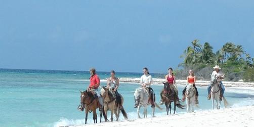 Horseback Riding Beach Jungle Cowboy Tiulum